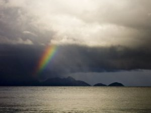 a rainbow in a storm has black. so there.