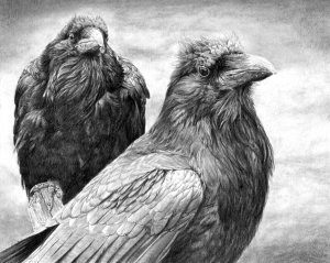 Huginn & Muninn by Guy Hobbs