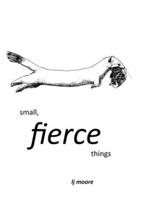 Announcing my new book of illustrated flash fiction: small, fierce things